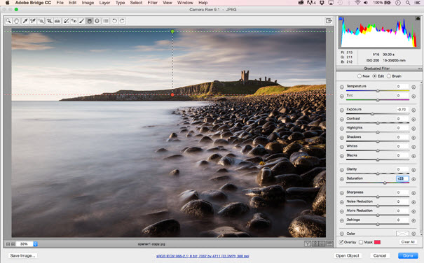 Memproses format raw - Graduated Filter
